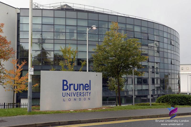 دانشگاه برونل