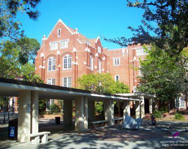 دانشگاه فلوریدا
