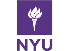 دانشگاه نیویورک