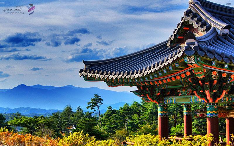 راهنمای تحصیل در کره جنوبی