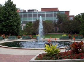 دانشگاه ایالتی میشیگان